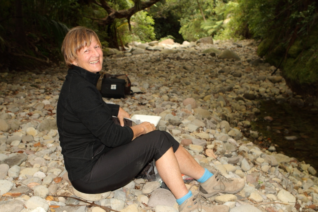 Lyn at Awaroa stream