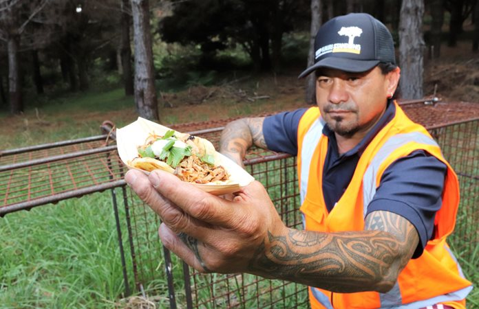 'Sticky pulled wild pork hawker rolls' latest field days treat